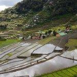 Batad - tarasy ryżowe 2
